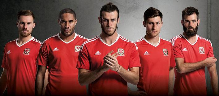 Euro 2016 Wales Team