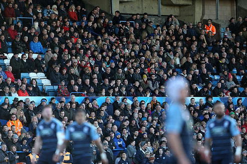 Cardiff Arms Park, Crowd