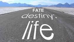 fate-destiny_2.jpg