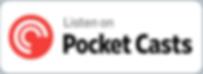 pocketcasts_large_light_2x.png