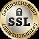 SSL_Datensicherheit-100x100.png