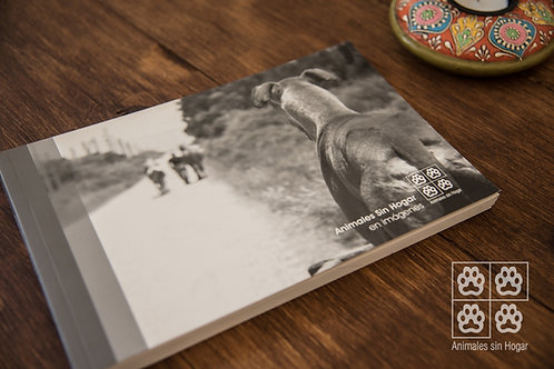 Libro - Animales sin Hogar en imágenes