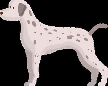 Dog 1.png