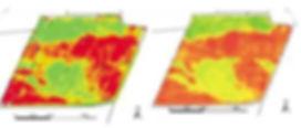 Моделирование урожайности космоснимкам и фактическая урожайность
