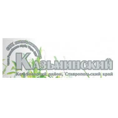 Колхоз Казьминский
