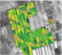 Информация по космоснимкам, анализ архивных снимков