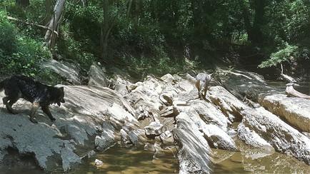 Walking the Crag rock