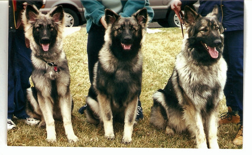 Skye and her two daughters.