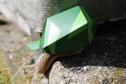 Helix militaris, snail, plastic