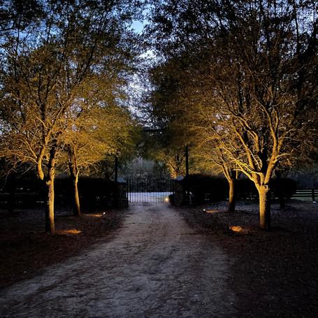 Solar-lights at a beautiful plantation entrance!