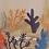 Thumbnail: Bouteille poissons et coraux