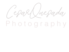Logo sin color.png