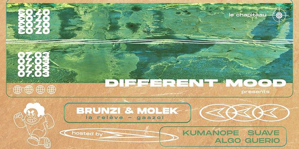 Different Mood ft. Brunzi & Molek