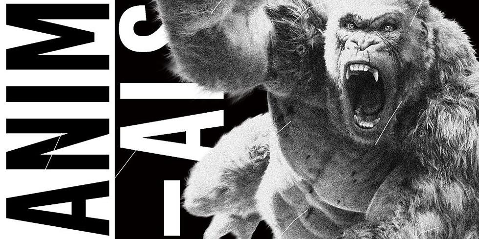 Animals ◊ House to techno Vol.9