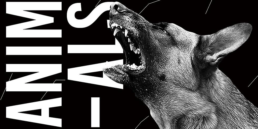 Animals ◊ House to techno Vol.3