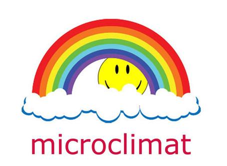 Focus #7 : Microclimat revient pour le dernier Open-Air de l'année !
