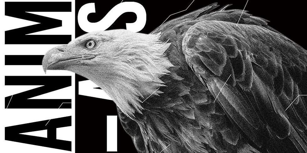 Animals ◊ House to techno Vol.10