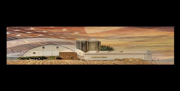 Farm-With-Flag-Sky-30769