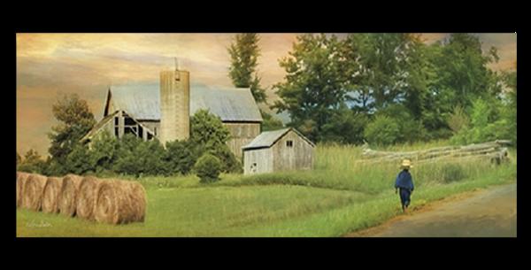 Amish Barefoot - 20546