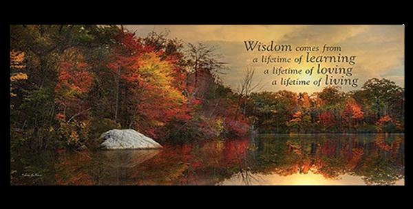 Wisdom - 20519