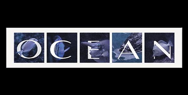 Ocean-30768