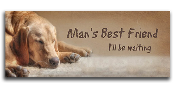 Man's Best Friend - 20509