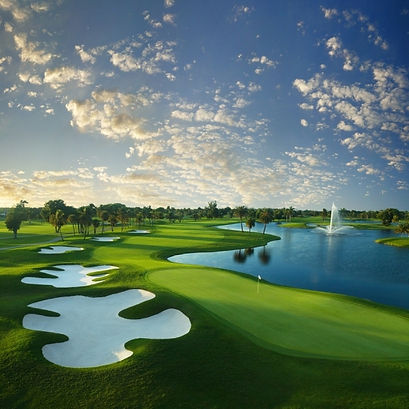 US TOUR - TRUMP NATIONAL DORAL, WGC CADILLAC CHAMP. - TAGG 200 Greatest Golfers