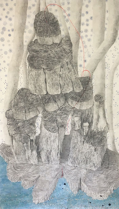 The Thin Red Line,graphite, coloured pencil, ink, rising sea levels, frottage, drawing, contemporary drawing, Susan Kester, Susan Haycock, Goldsmith's alumini, Goldsmith's university