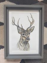 Deer - Sold