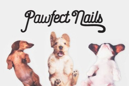 Pawfect Nails Dog Nail File