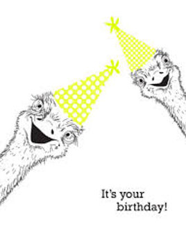 It's Your Birthday Ostriches Greeting Card