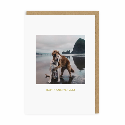 Happy Anniversary Dogs Greeting Card