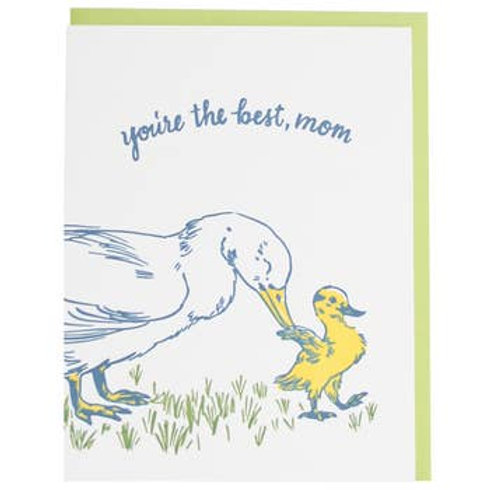 Duck and Duckling Greeting card