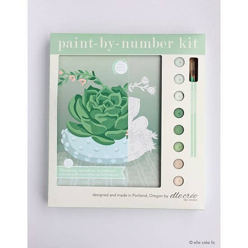 Paint by Number Blooming Succulent Kit