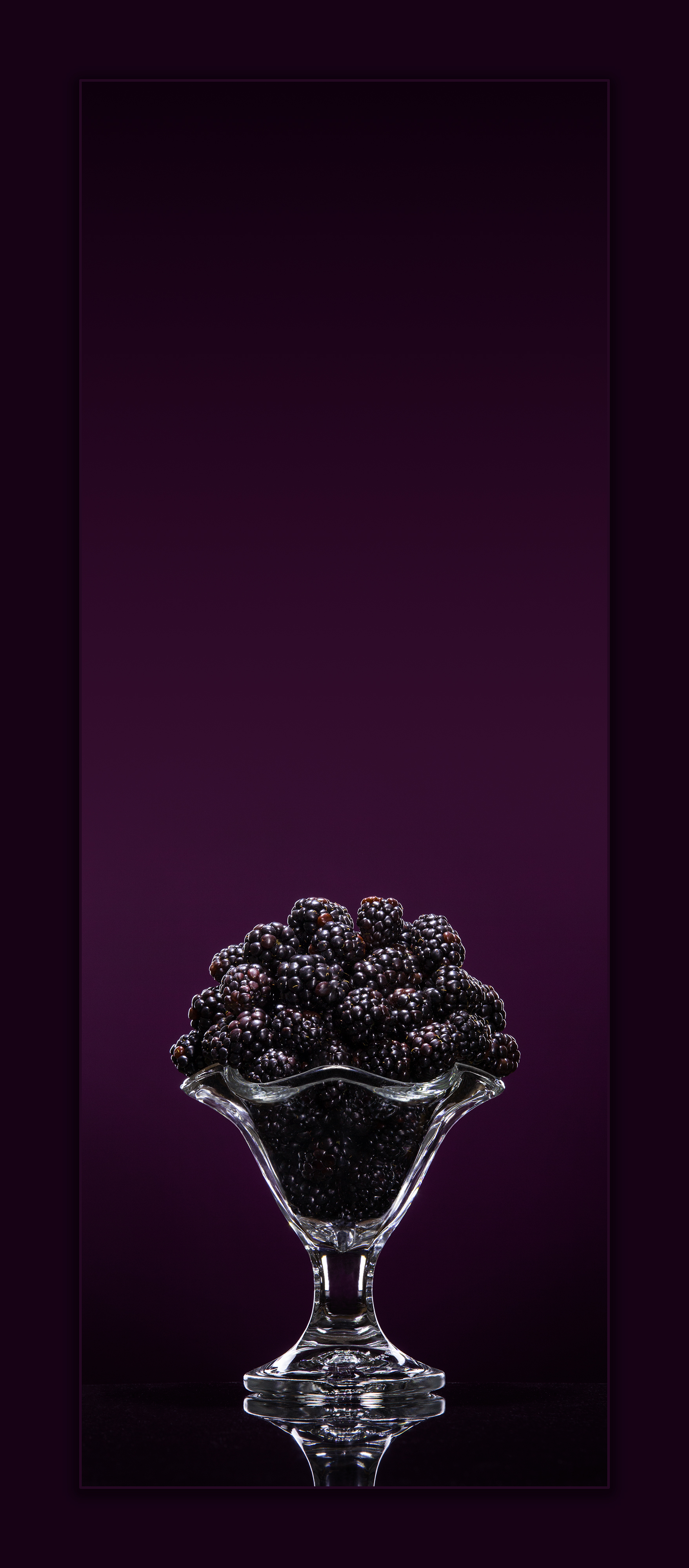 Blackberry Delight