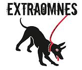 EXTRAOMNES LOGO.PNG