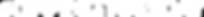 GT-Logo-Horizontal-White.png