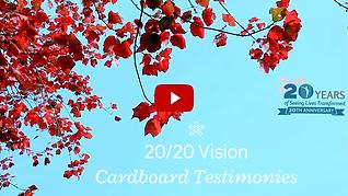 2020-vision-cardboard-testimonies.png
