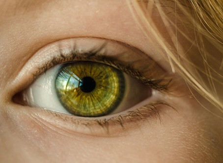 August is National Eye Exam Month: 5 Ways Eye Health Affects Your Child's Performance in School