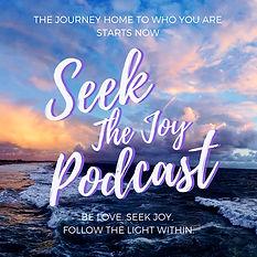seek the joy.jpeg