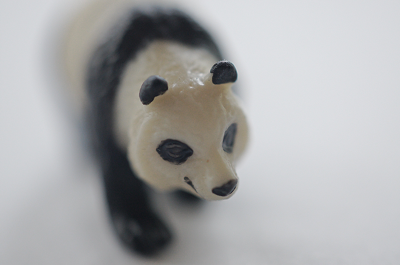 Miniature Panda