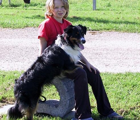 Hunde 057.jpg