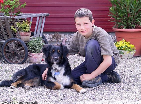 Hunde 103.JPG