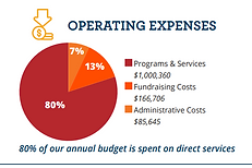 2020 Operating Expenses.PNG
