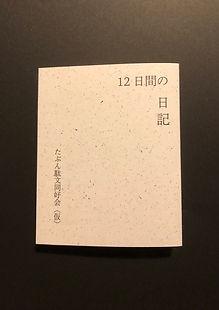12日間の日記.JPG