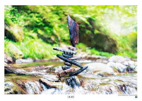 生彩 A3サイズ 写真作品