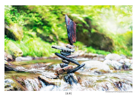 生彩 A4サイズ PHOTOGRAPHY
