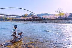 20200325_多摩川_青梅_02.jpg