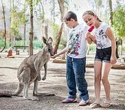 TipTopTelAviv vous propose des idées de sorties avec vos enfants en Israël .