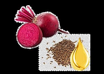 flax-seed-linseed-oil-pumpkin-seed-seed.